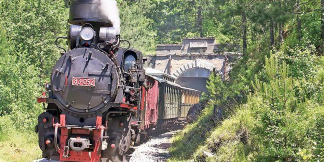 Voz-cira-s-lokomotivom-parnjaccom-na-Sarganskoj-osmici-foto-S-Jovicic