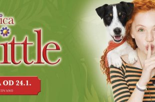 Little_miss_Dolittle-21920x600
