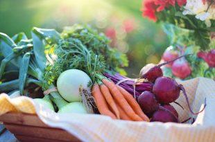 vegetables-2485055_960_720