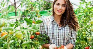 Poljoprivreda-Foto-shutterstock-1