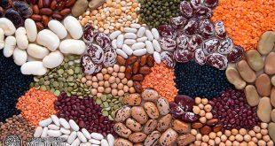 biljni-proteini-novembar-2017