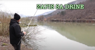 ZAPIS SA DRINE INSERT